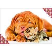 """Алмазная вышивка 22*32 см - """"котенок и щенок"""" холст, пинцет, емкость 1110907 (225426)"""